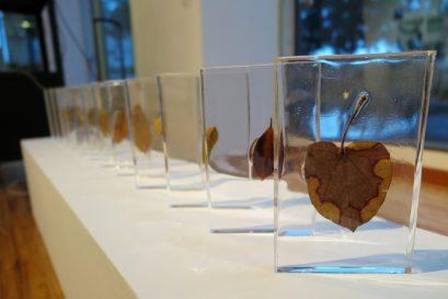 梁海怡同學的作品「弱骨」把枯葉與綠葉以人手縫合,象徵現今人類過度操縱大自然,使環境日益脆弱,即使人們試圖挽救,都已面目全非。