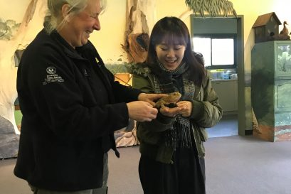 学员到克莱兰德野生动物园参观,了解澳洲对动物和大自然的保育工作。