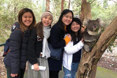 學員到克萊蘭德野生動物園參觀,喜與樹熊合照。